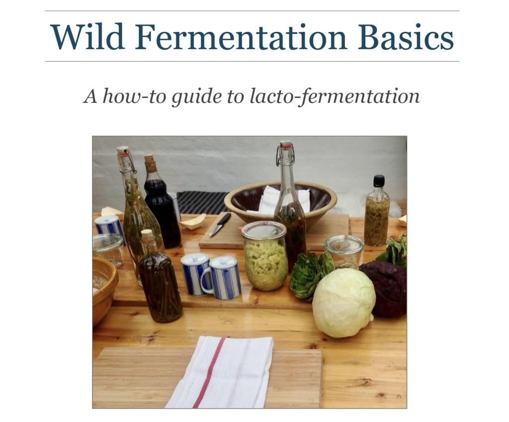 Wild Fermentation Ebook & Video Tutorials with Sauerkraut