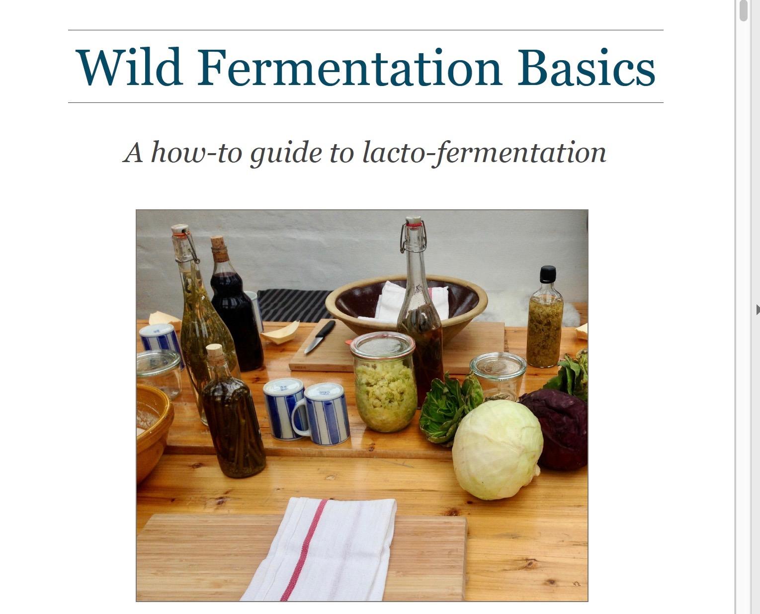 Wild Fermentation Ebook - Intro to Lacto-fermentation